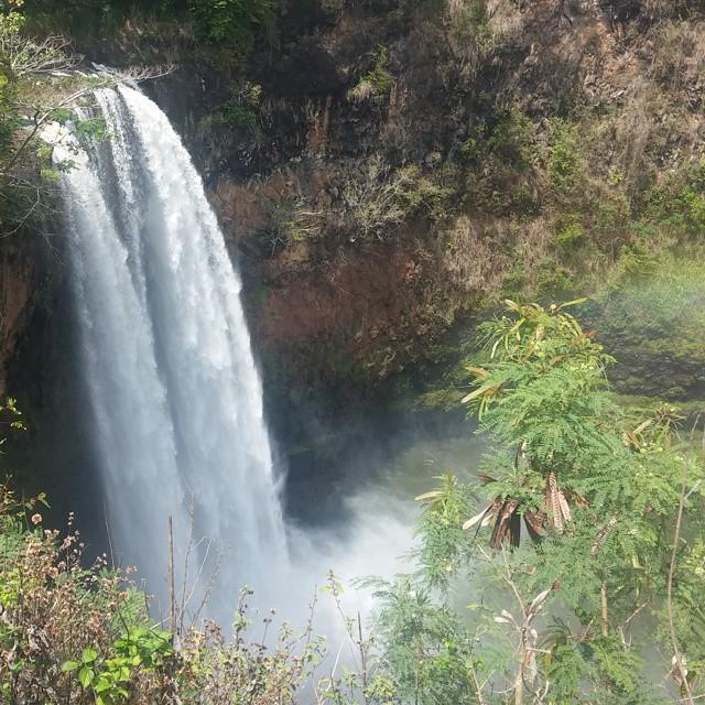 Met de auto naar een prachtige waterval gereden (Wailua).