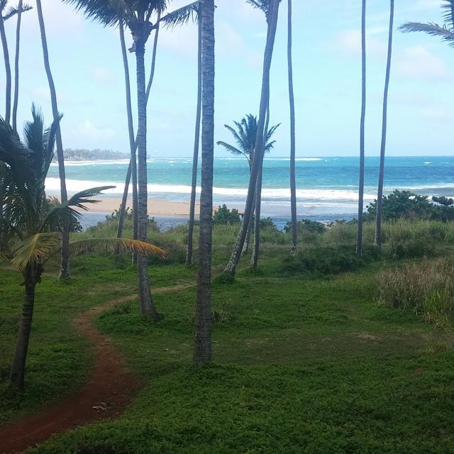 Ook Kaua'i heeft een prachtig strand.