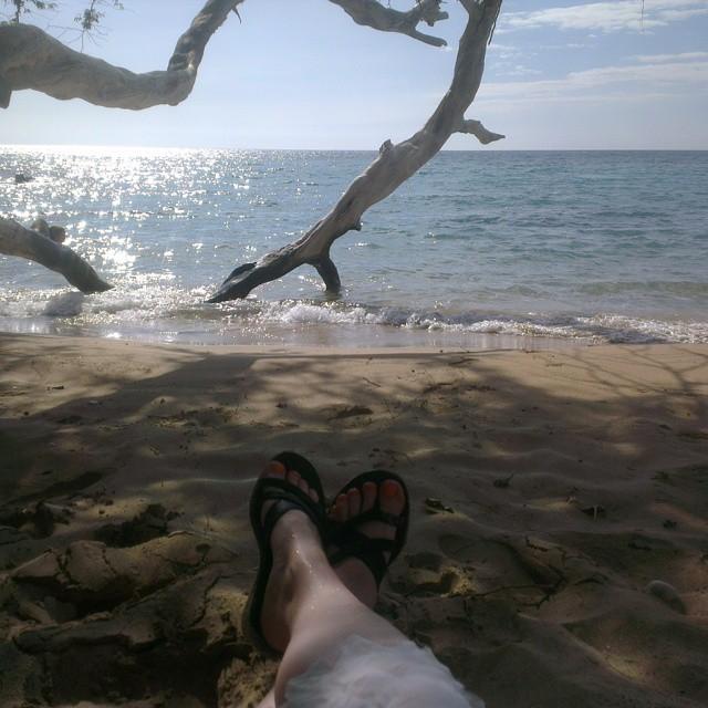 Terwijl Edith lekker op het strand blijft chillen