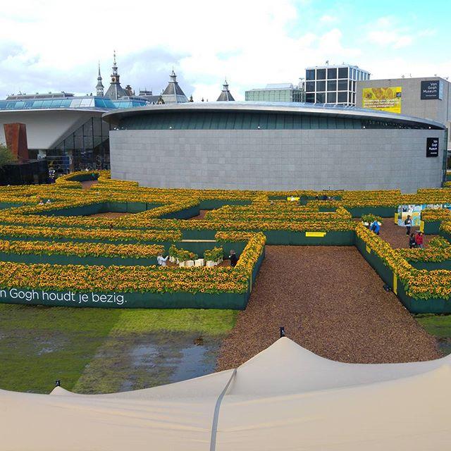 Vandaag naar het zonnebloemlabyrint bij het Van Goghmuseum geweest.