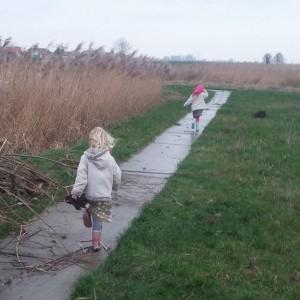 Wandelen in de IJdoorn polder