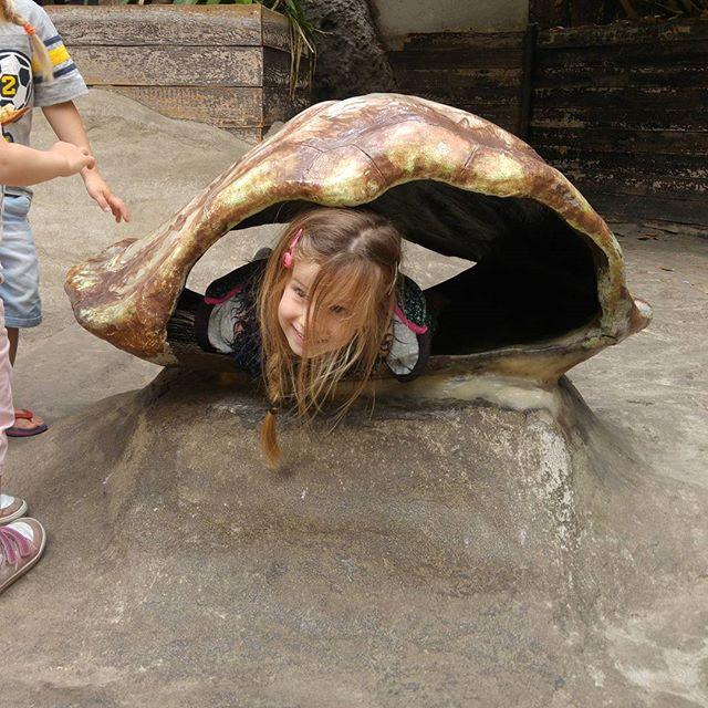 Dagje dierentuin in Blijdorp!