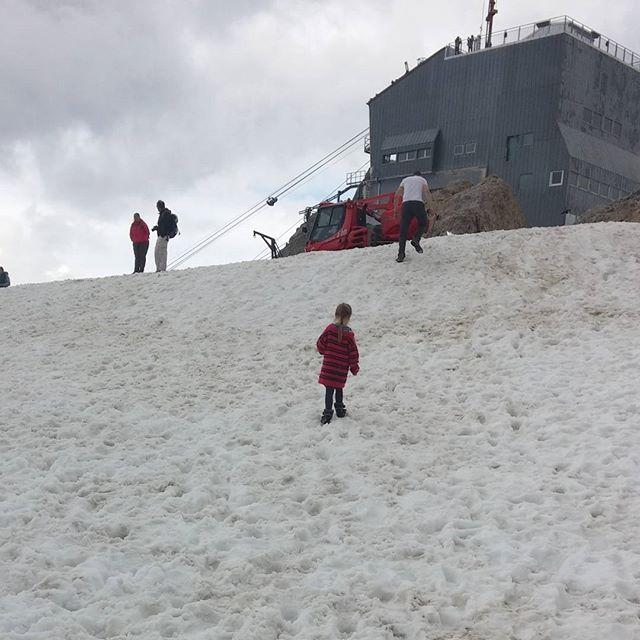 De laatste stappen in de sneeuw van Lyse en Elmer