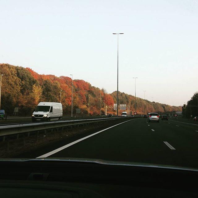 'Foliage' in Nederland, ook mooi.