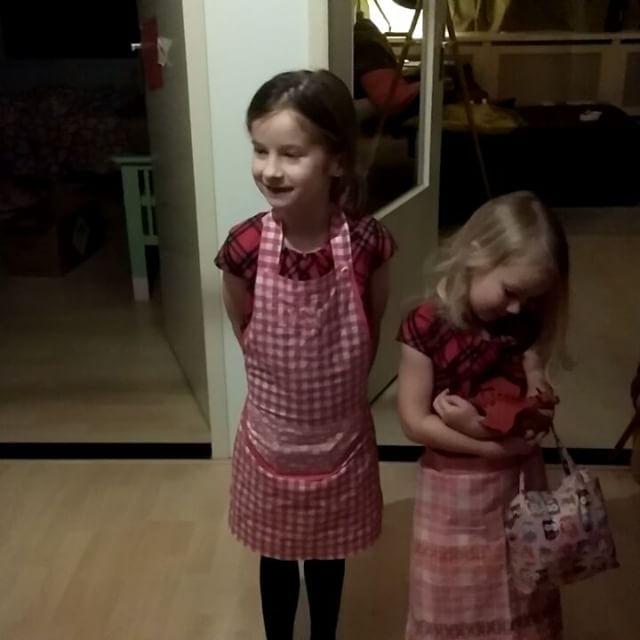 Filmpje : Verrassing voor Elmer deel 2