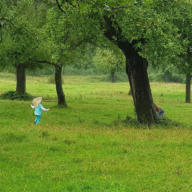 Lekker rennen in se boomgaard.