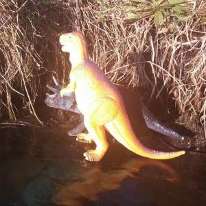 Dino's gespot op het ijs in Noord
